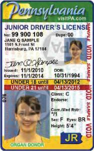 PA Jr Driver's License