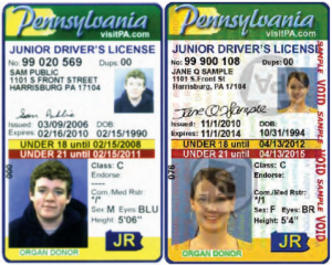PennDOT sample Junior Drivers License ID